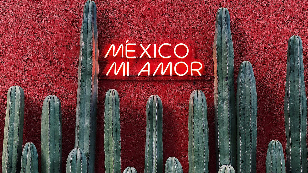 Veggie Mexican Feast - 5pm-6pm Saturday 6th March  2021