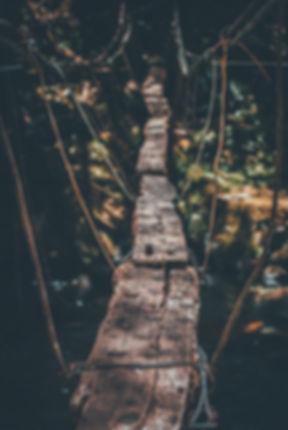 Image by Valentín Betancur
