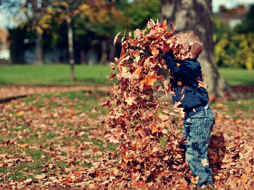 Autumn Music Inspiration for Babies & Young Children | Musical Play