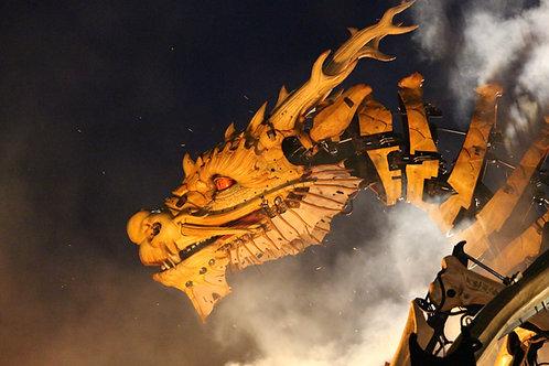Snap of the Dragon - Spiritual Growth, Abundance, Wisdom, Guidance & Protection