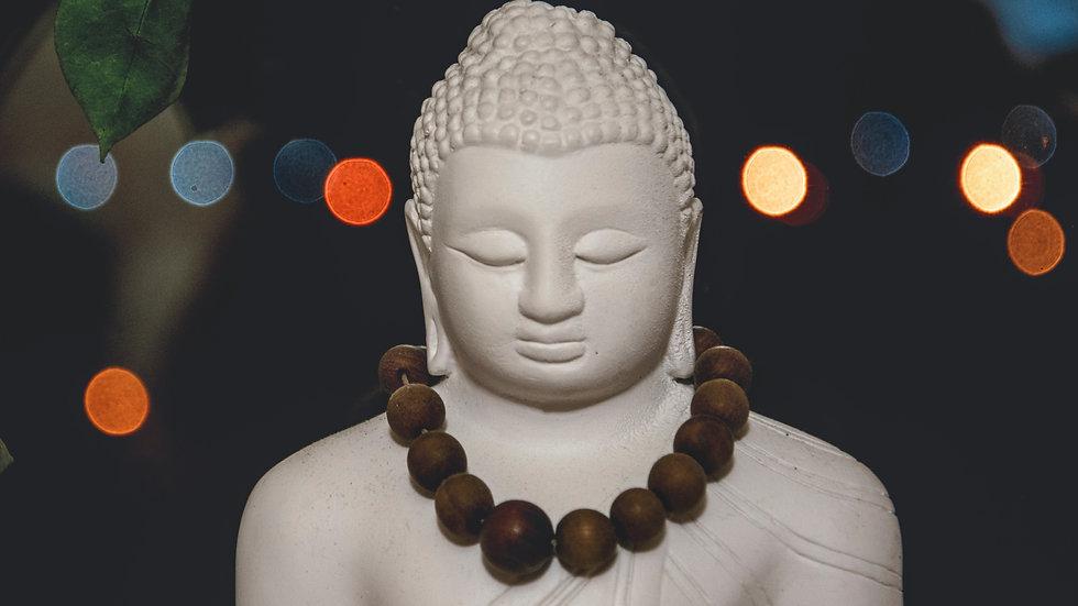 Grand Maître Reiki Usui 18