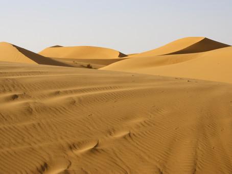 The Incredible Sahara Desert