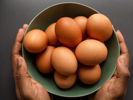 Eggy, eggy, eggy, oi, oi, oi