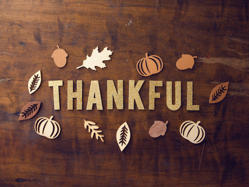 Giving Thanks - in Spite of it All!