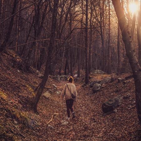 Inspiration Corner: Benefits of Embracing Your Solitude