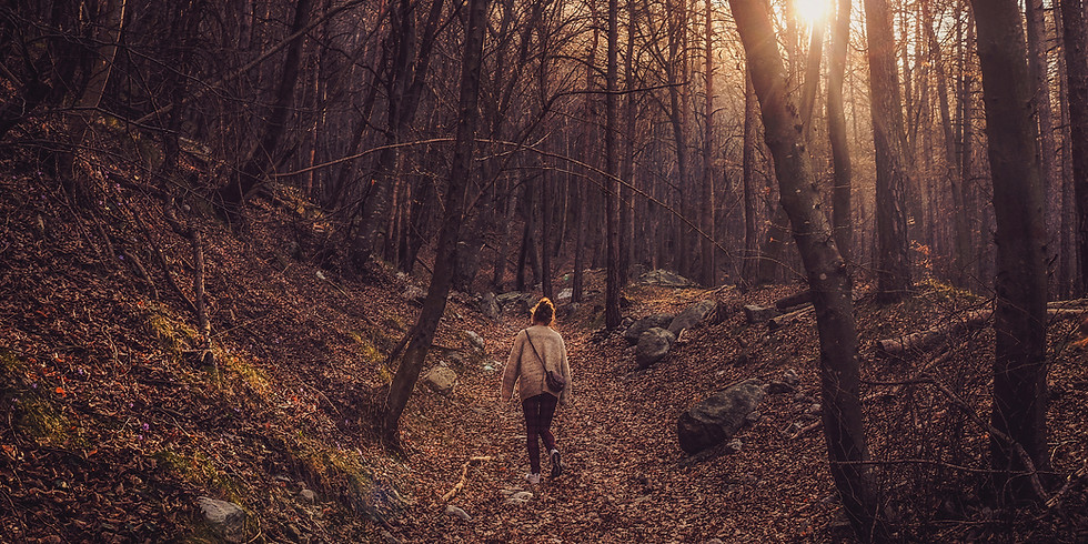 Mindful Walking - FREE EVENT