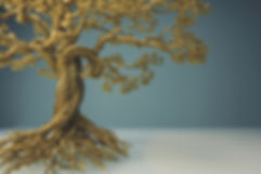 Funcional Medicine Tree - looking for the root cause of illness