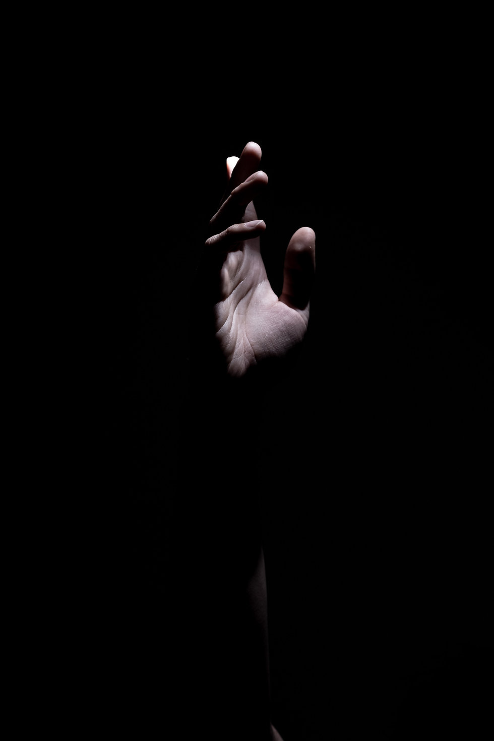 Image by Akira Hojo