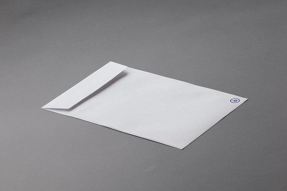 Branding Envelope Flat Lay