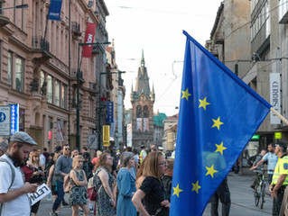 REGIONAL INTERNATIONAL ORGANISATIONS IN THE FIGHT AGAINST COVID-19 EPISODE I - THE EUROPEAN UNION