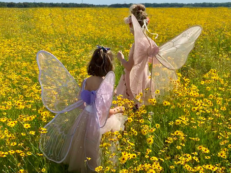 Fairy Mythology of the Victorians