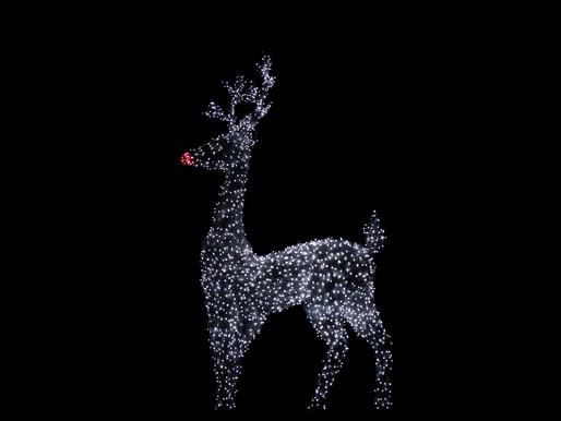 Rudolfova zgodba (O nesreči enega, ki postane sreča mnogih)