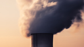Capturing Carbon to Generate Negative Emissions