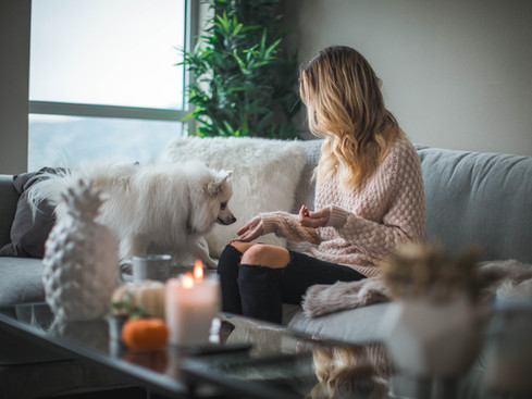 Candle safety for your dog or cat