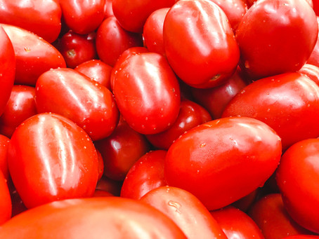 Plum Tomatoes - Preparing to Make Fresh Sauce
