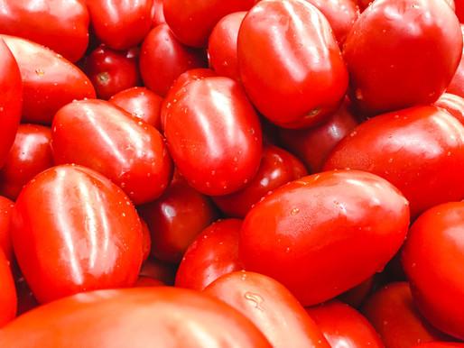 Plum Tomatoes - Preparing to Make Fresh Sauce