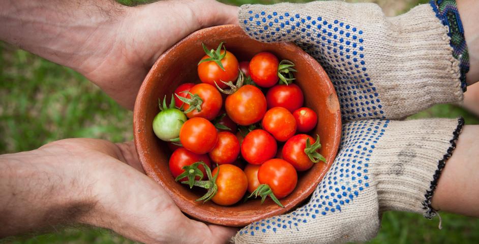 Sharing Garden Items