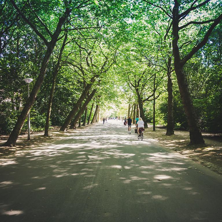 Trage wegen in de stad: naar Evere (NL)