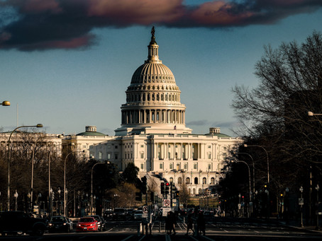 What Could We See on Capitol Hill in 2021?  A Government Affairs Discussion with Megan Knight