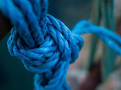 A Compendium of Essential Knots