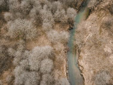 FICCIÓN | Río Muerto