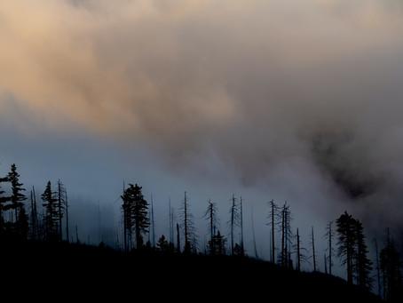 306 Active Wildfires in British Columbia