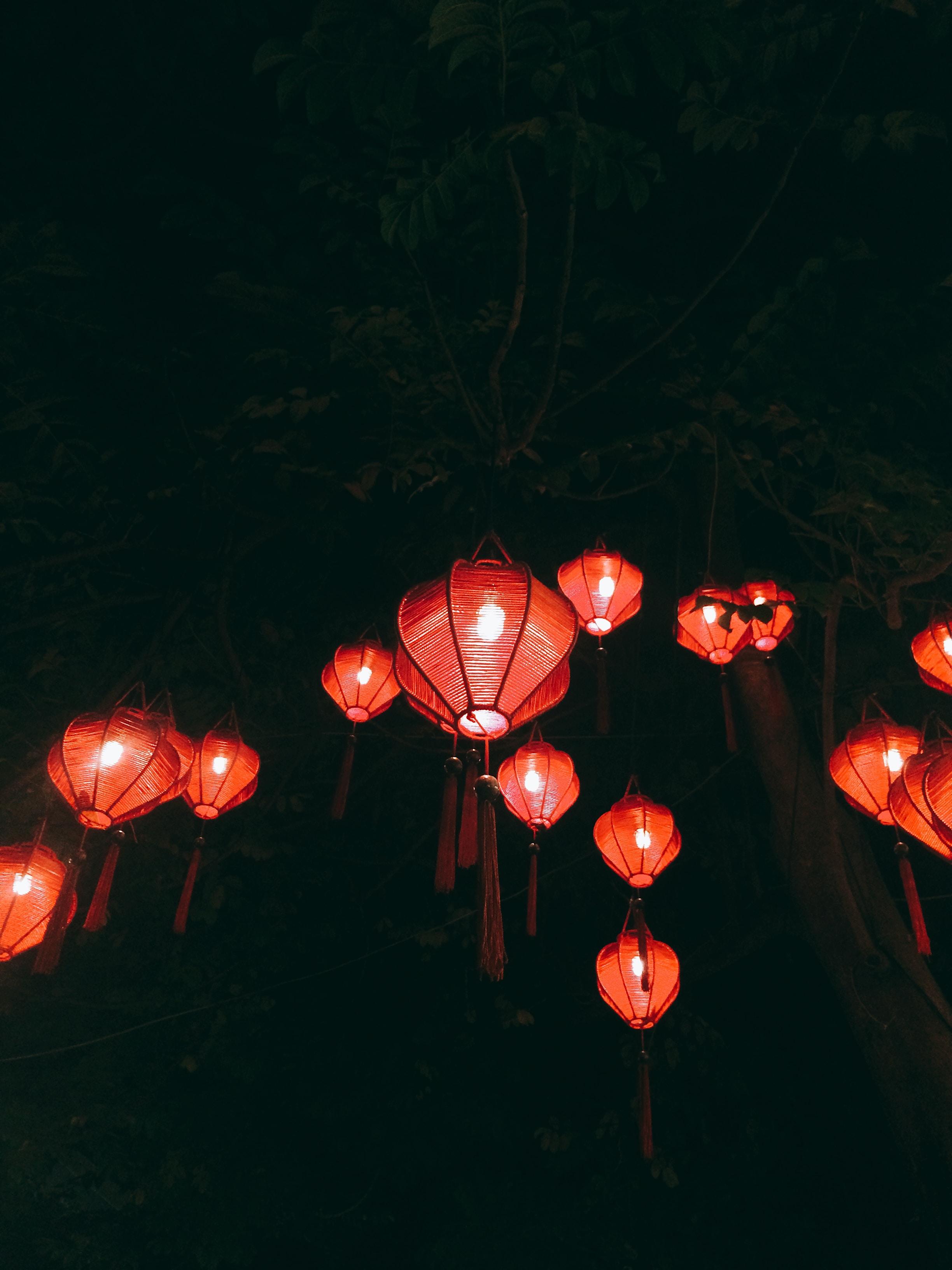 Image by Linh Đào