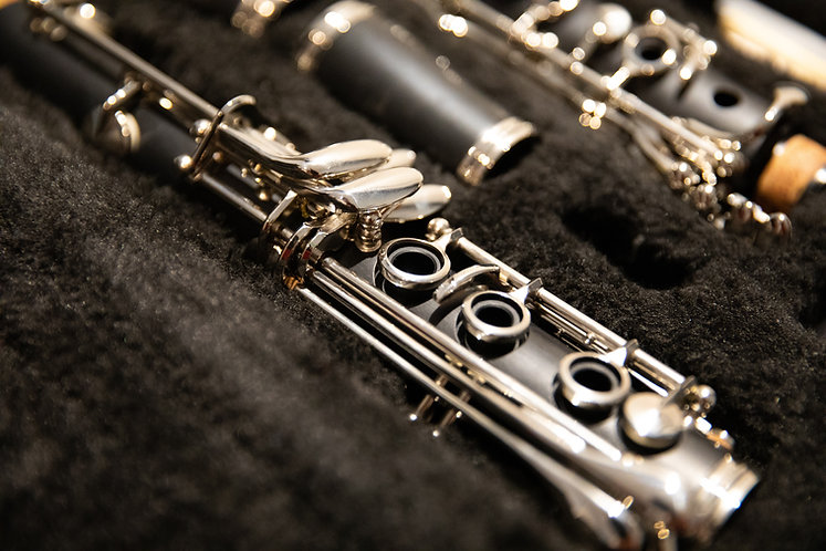 Bb Clarinet Full Service