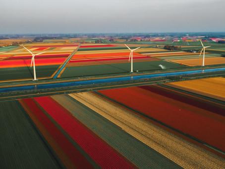 Olanda deschide terasele  și elimină programarea pentru magazinele neesențiale