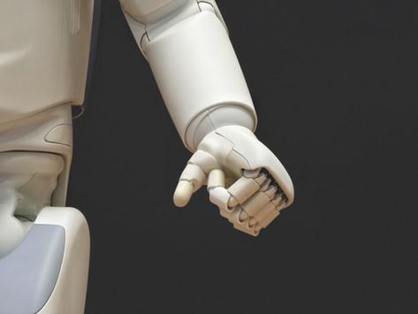 Do sex robots dream of electric dicks?