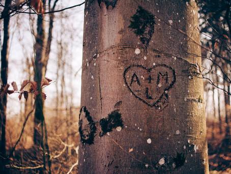 The Word Tree