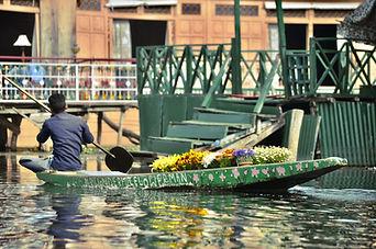 Dal Lake in Jammu and Kashmir