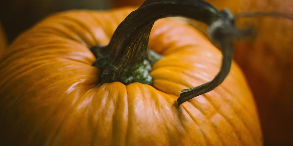SPECIAL Ijams Halloween Pop-up Program