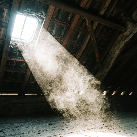 DIY Attic Cleaning- When should you hire a professional cleaning team?