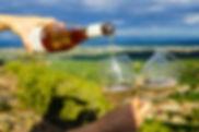 service-vin-bio-dans-les-vignes.jpeg