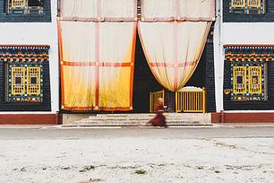 Image by Reyhan Lama