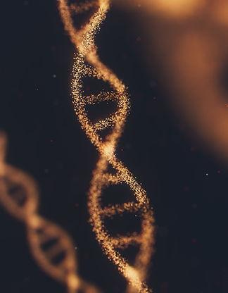 معرفة الأصل الذي تنتمي له والمنطقة الجغرافية التي يعود لها أصلك من خلال تحليل الحمض النووي دي ان اي DNA