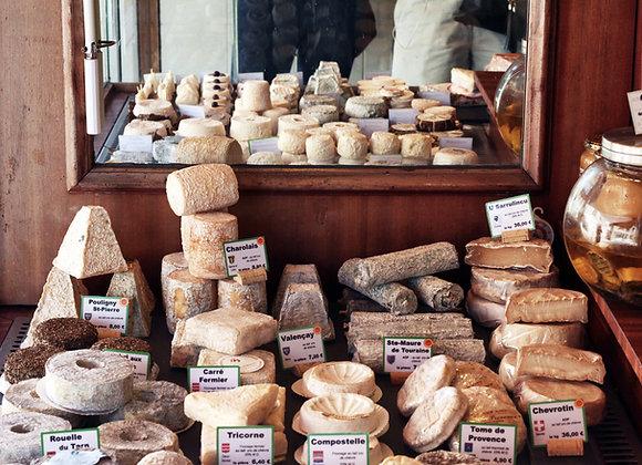 Производство сыра, масла, творога, сметаны | финансовая модель бизнес плана
