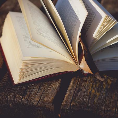 Book Review: Mail Order Bride – Summer's Fury by Katie Wyatt