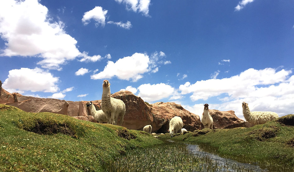 Tourisme solidaire Bolivie