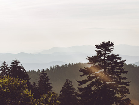Pros & Cons of Places to Stay in the Smoky Mountains