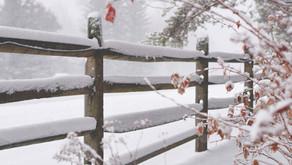Snödjup - en enkel Qlik Sense-app