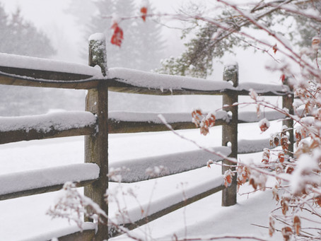 Benefits of Starting Your Fence Project in the Winter or Fall