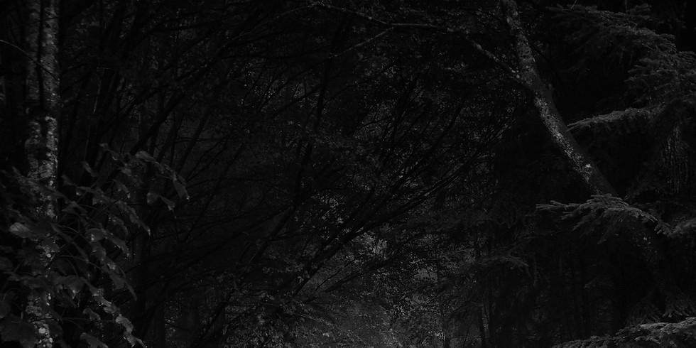 One-Shot: A Midsummer Night's Scream