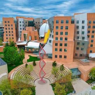Exploring MIT as a Sustainable Test Bed