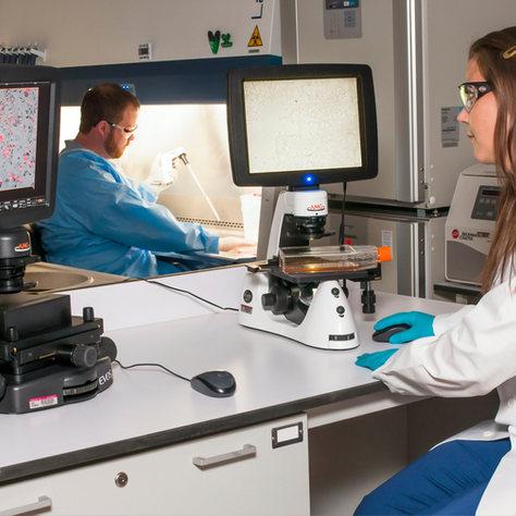 Pharma&Biotech