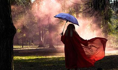 Image de Ani Kolleshi
