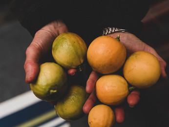 Como descascar o Limão