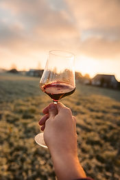Wine Blending Workshop & Wine Tour