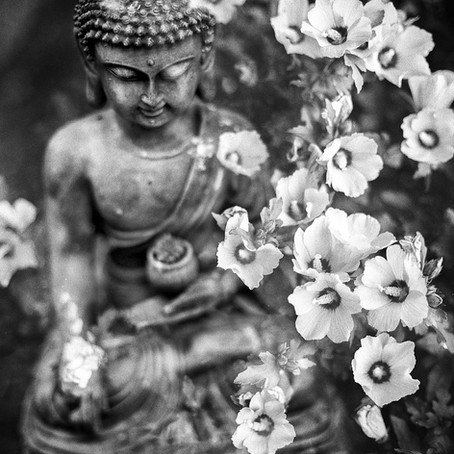 How Do I Reach Enlightenment?